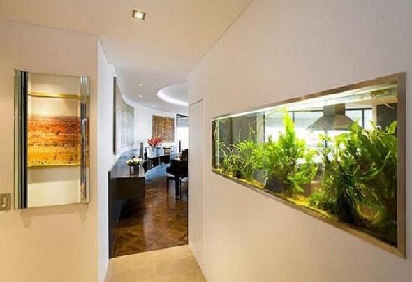 Luxury Aquarium apartment Noel Robinson