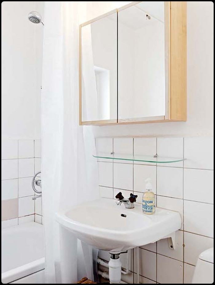 The Bathroom Small Apartment 2011-700x929