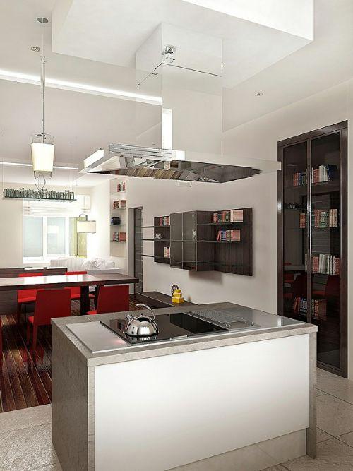 Kitchen Minimalistic Apartment Design