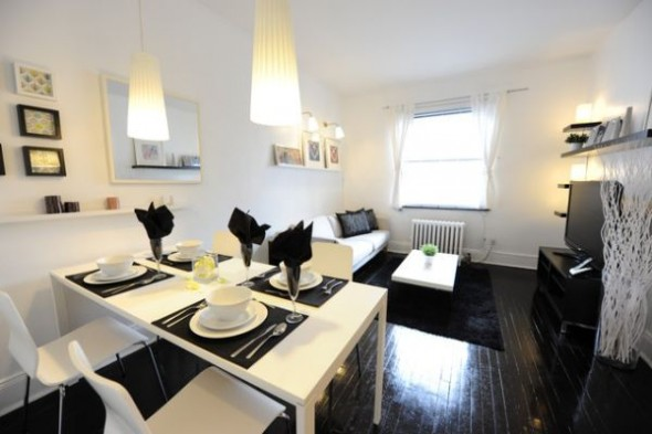 Black and White Dining room Apartment Decor