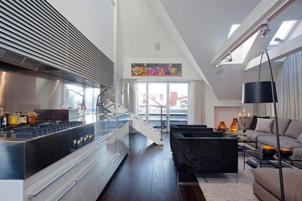 Contemporary Apartment budha accents kitchen