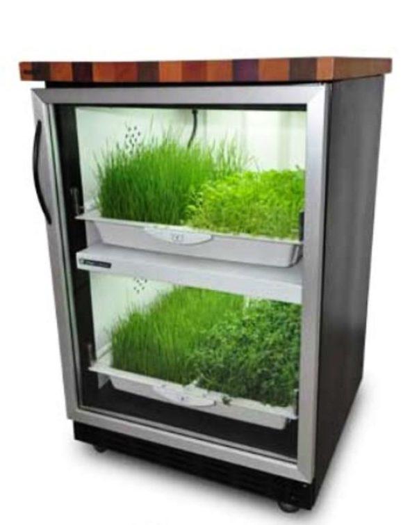 Kitchen Nano Garden Best