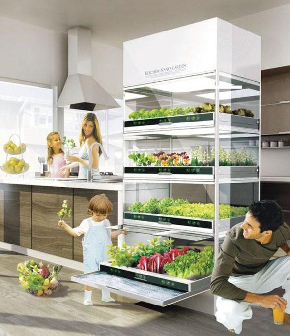 Kitchen Nano Garden Design