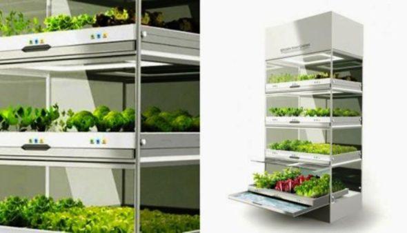 Kitchen Nano Garden Detail