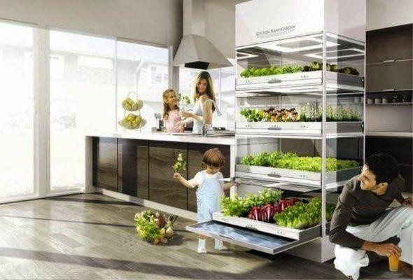 Kitchen Nano Garden Display