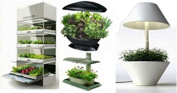 Kitchen Nano Garden Structure
