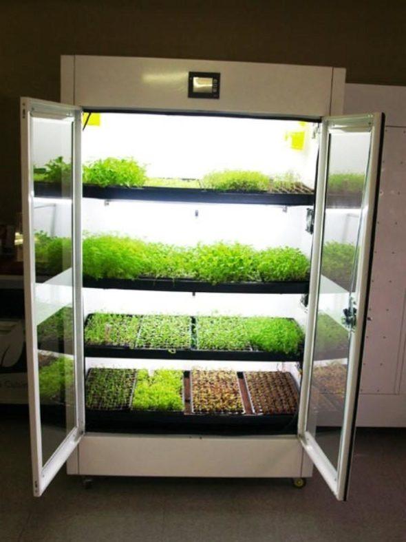 Kitchen Nano Garden View