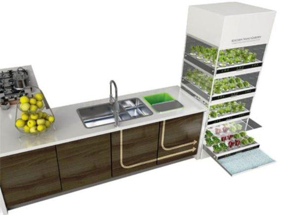 Kitchen Nano Garden in Kitchen