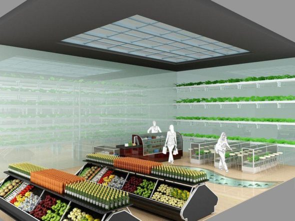 Kitchen Nano Garden in Mart